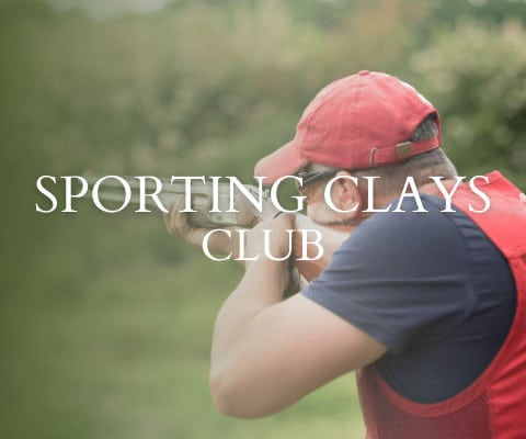 Clubs and Interests
